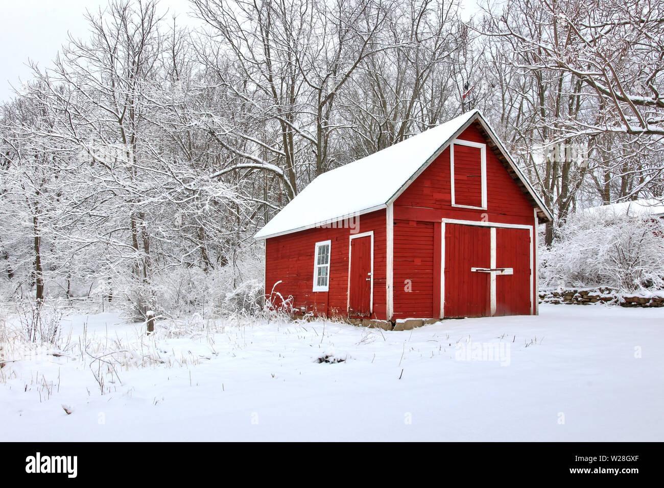 Vista escénica con graneros rojos en la cubierta de nieve fresca Woods. Por la mañana después de la tormenta. La agricultura, la agricultura y la vida rural en invierno de fondo. Foto de stock