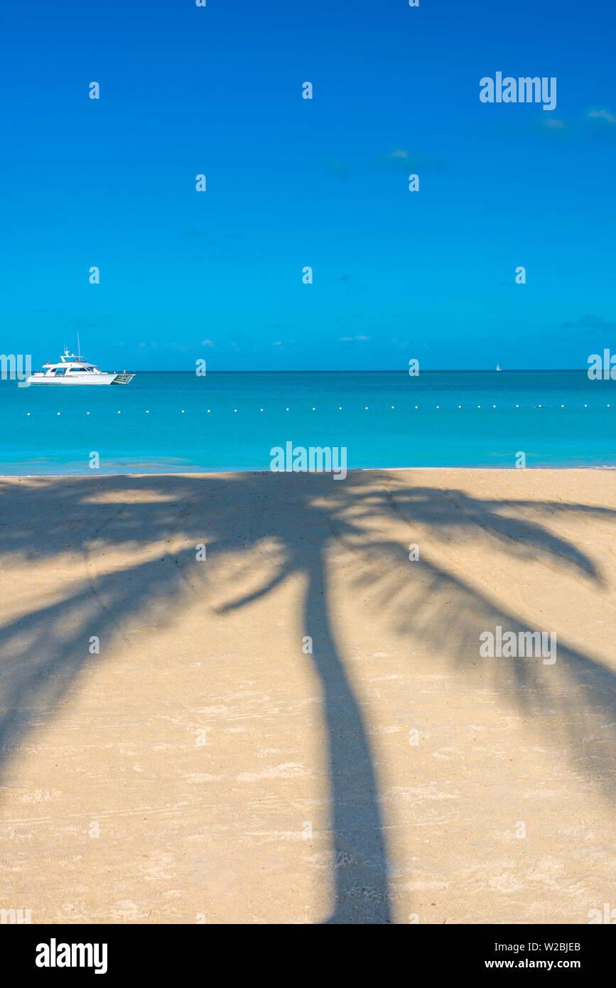 Antigua, Jolly Bay Beach, Palmeras proyecten sombras Foto de stock