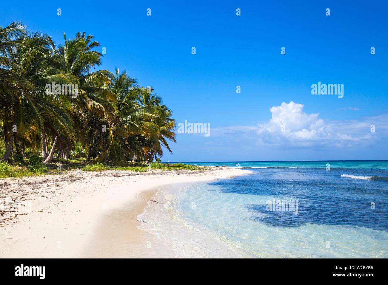 República Dominicana, Punta Cana, Parque Nacional del Este, Isla Saona, Playa Catuano Foto de stock