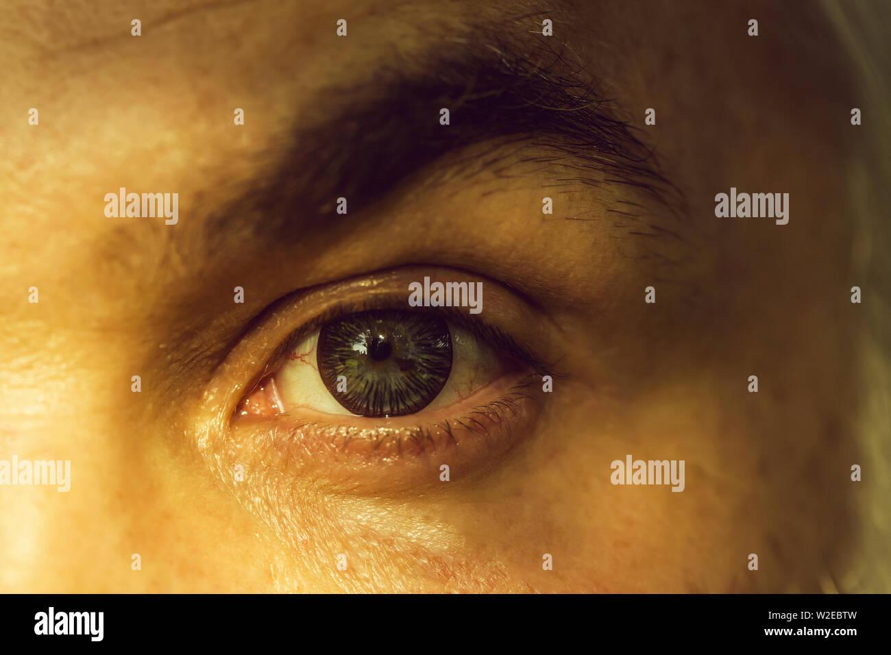 Cejas De Hombre macho con rayas brillante lente ocular y peludas cejas de