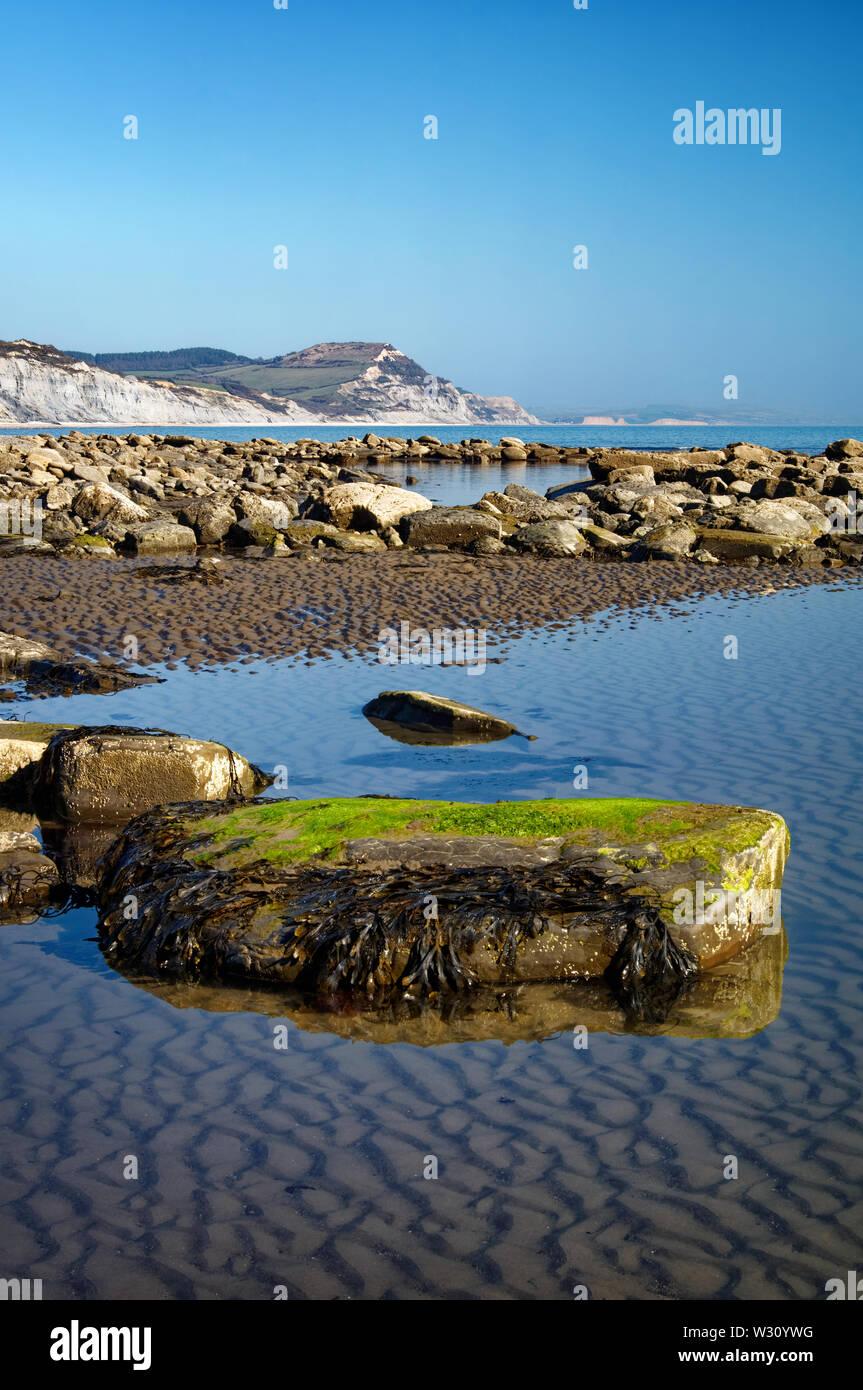 Reino Unido,Dorset,Lyme Bay en la marea baja mirando hacia la tapa de oro Foto de stock