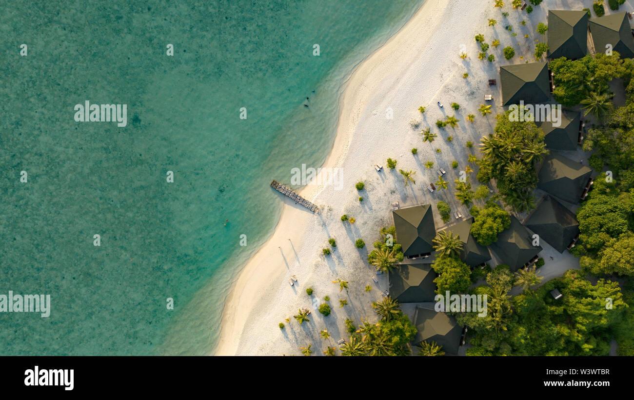 Los ojos de aves increíbles vistas en Maldivas Foto de stock