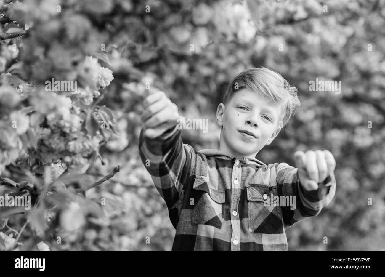 Guy disfrutando de flor de cerezo sakura. Tierna flor. Lindo niño disfruta del cálido día de primavera. Visita Sakura Garden. Boy teen posando cerca de Sakura. Niño en rosa Flores de sakura fondo de árbol. Concepto de botánica. Imagen De Stock