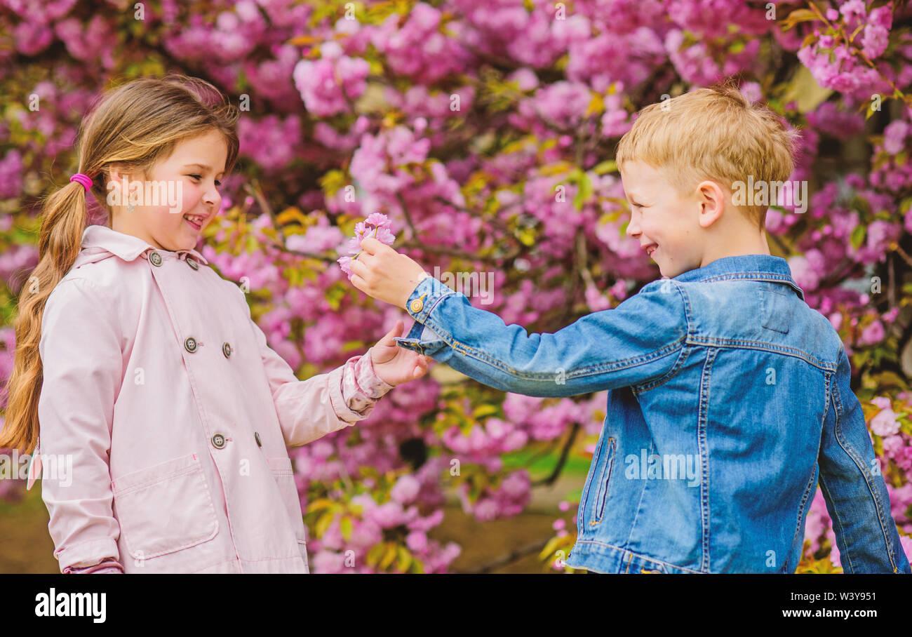 Dando todas las flores para ella. La sorprenden. Los niños disfrutan Pink Cherry Blossom. Los bebés romántico. Par niños en flores de sakura fondo de árbol. Tierno amor sentimientos. Niña disfrute de las flores de la primavera. Imagen De Stock