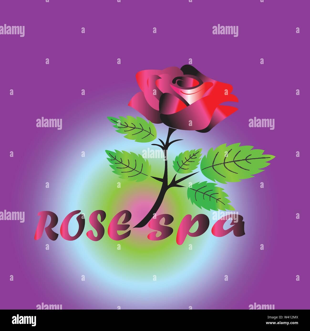 Logotipo de spa con rosa roja, aislados con fondo violeta Imagen De Stock