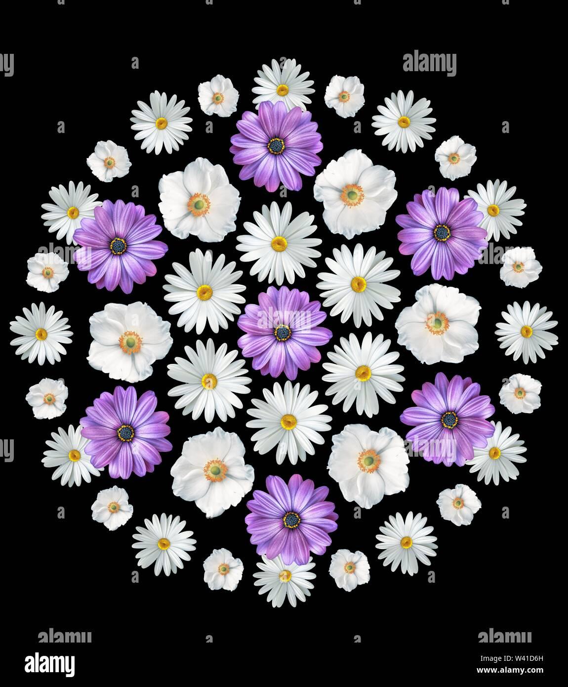 Bouquet de flores de verano abstracto sobre fondo blanco. Imprimir. Chamomiles, cosmos flores y violetas Imagen De Stock