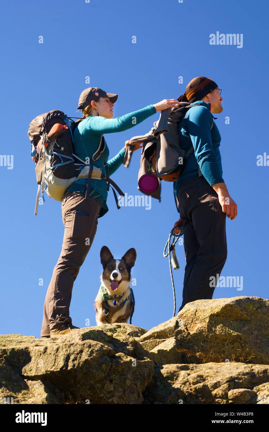 Senderismo par en la cima de una montaña con su Welsh Corgi Cardigan. Foto de stock