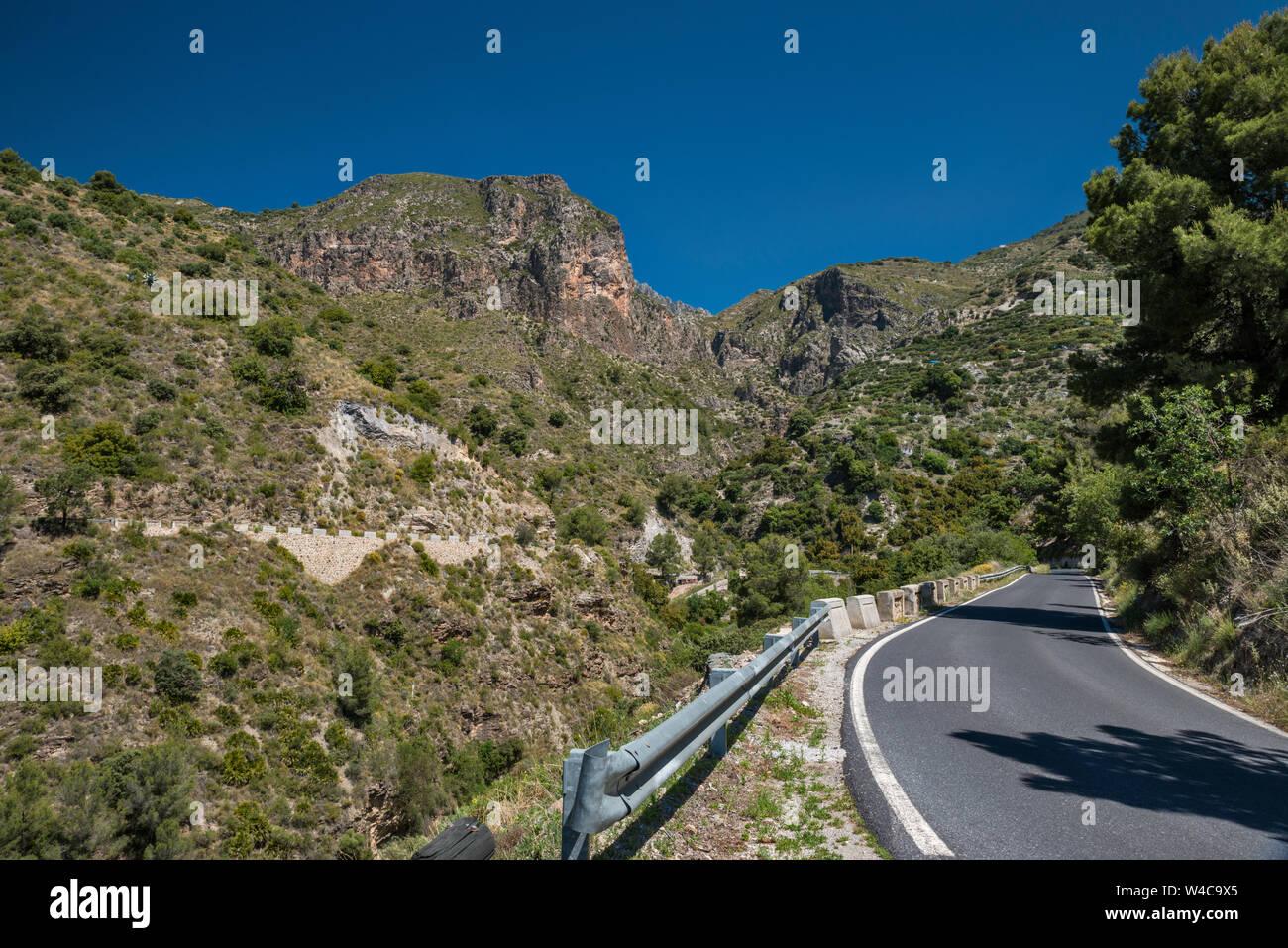A4050 Road en la Sierra del Chaparral, cerca de la aldea de Lentegi, provincia de Granada, Andalucía, España Foto de stock