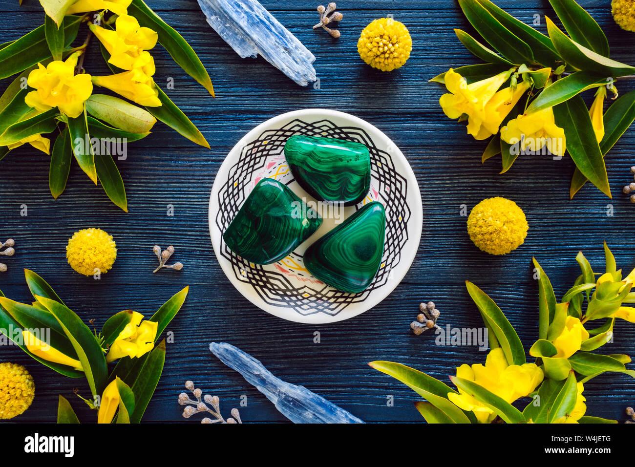 Con Malaquita Kyanite Azul y Amarillo Floración Vid trompeta de madera teñida de color azul Foto de stock
