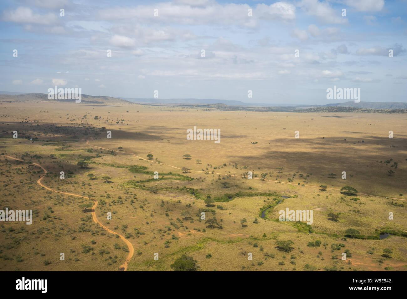 La fotografía aérea de los pastizales en el Parque nacional Serengeti, Tanzania Foto de stock