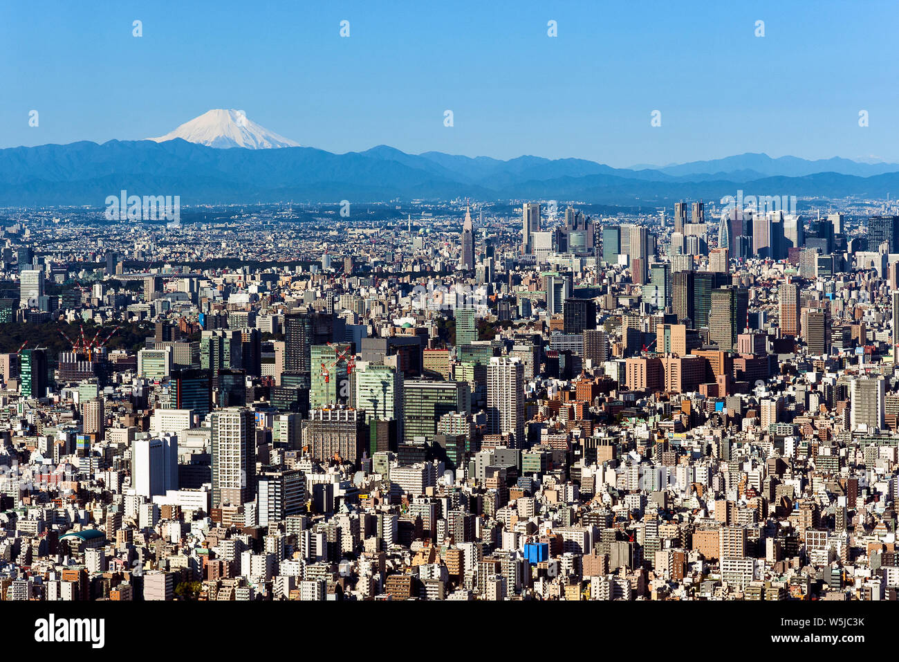 Mt. Fuji horizonte de Tokio Japón Paisaje Urbano Foto de stock