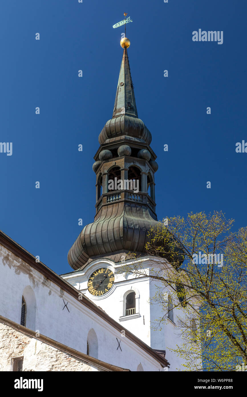 La Iglesia Dom en Toom-Ruutli, Tomea, Old Town, Tallin, Estonia Foto de stock