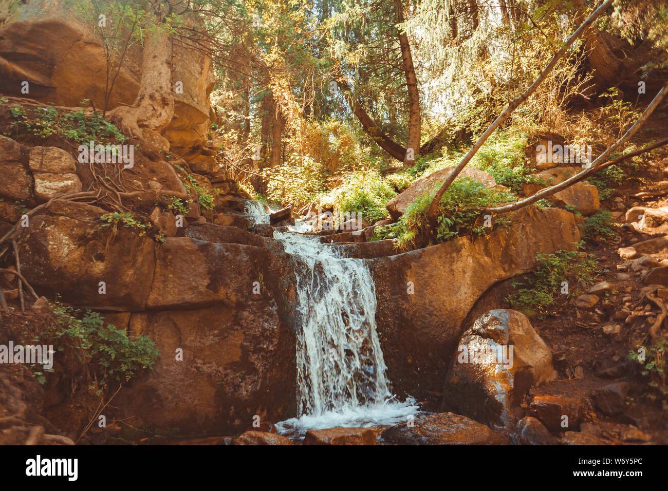 Cascada en forma de pasos en el bosque Foto de stock