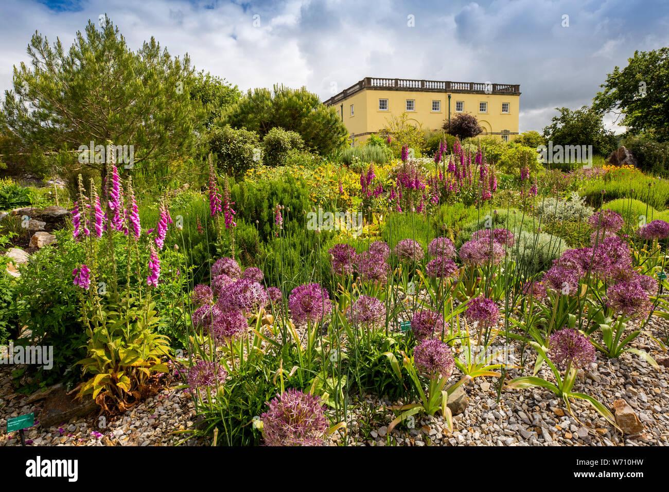 Carmarthenshire, Gales, Reino Unido, Llanarthney, Jardín Botánico Nacional de Gales, Principlity Casa propiedad de estilo Regency, siembra y floral Foto de stock