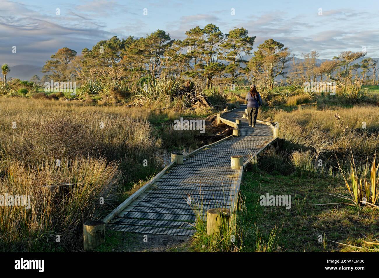 Estuario paseo boardwalk Karamea, región de la costa oeste, Nueva Zelanda. Foto de stock