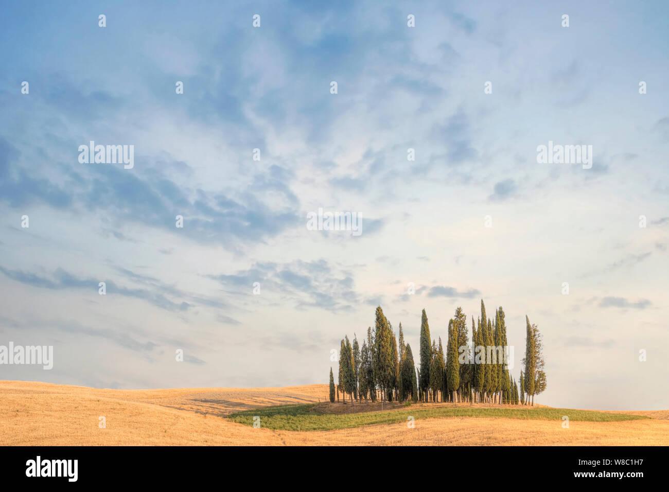 San Quirico, Toscana, Italia, Europa Foto de stock