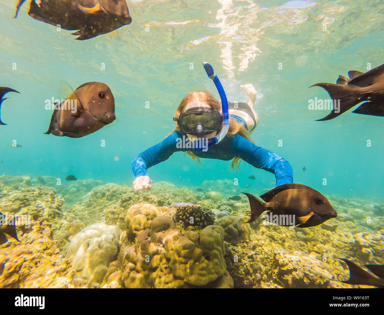 Mujer feliz en el esnórquel Máscara submarina de buceo con peces tropicales de arrecifes de coral mar piscina. Estilo de vida viajes de aventura al aire libre, deportes acuáticos, natación Foto de stock