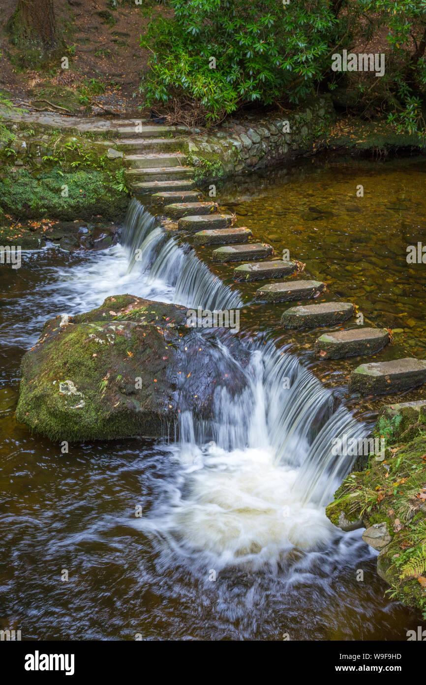 En el Stepping Stones Tollymore Park Foto de stock