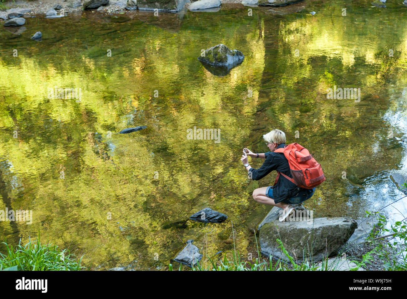Joven fotógrafo con el smartphone en la Tarr pasos Reserva Nacional, Exmoor, UK Foto de stock