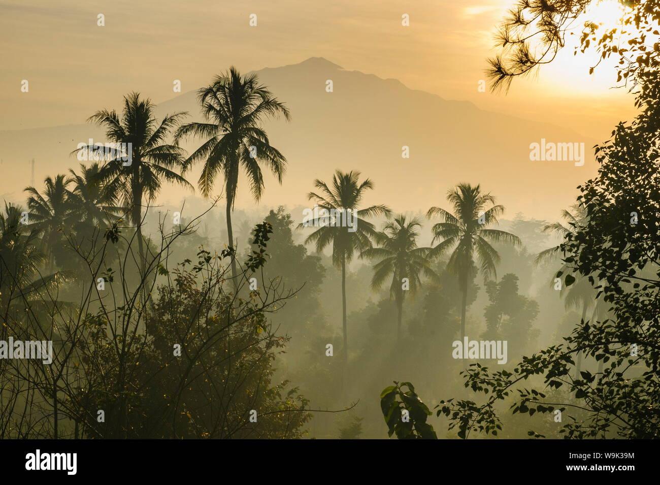 Temprano en la mañana la vista de la campiña que rodea el complejo del templo de Borobodur, Sitio del Patrimonio Mundial de la UNESCO, Java, Indonesia, Sudeste Asiático, Asia Foto de stock