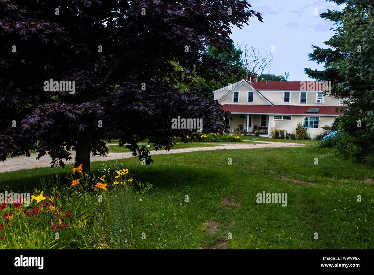 Patio delantero de una granja de Nueva Inglaterra - Blue Hill, Maine Foto de stock