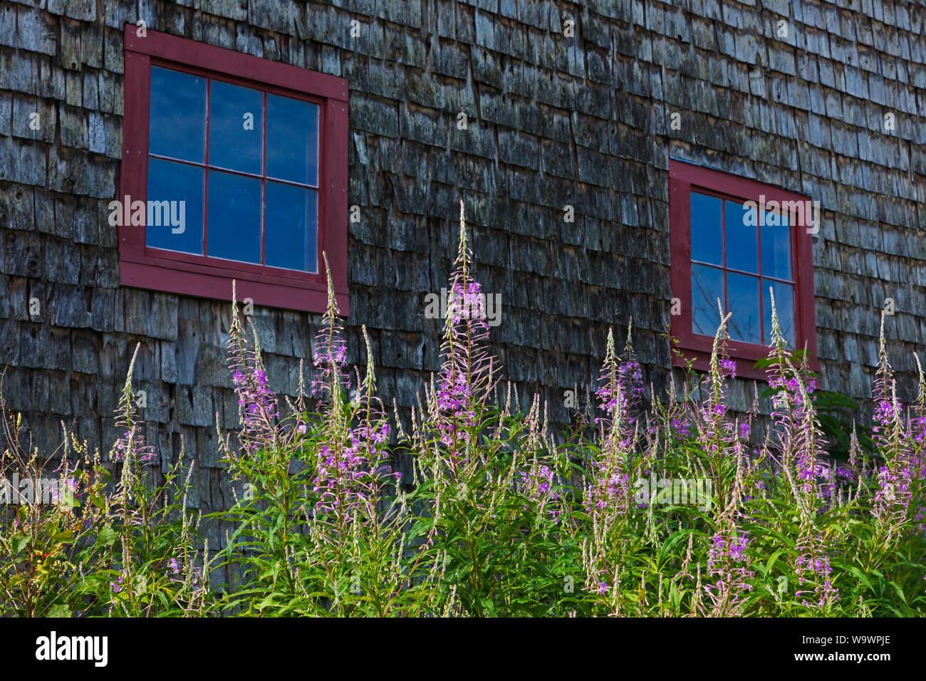 La Salicaria un granero en una granja de Nueva Inglaterra - Blue Hill, Maine Foto de stock