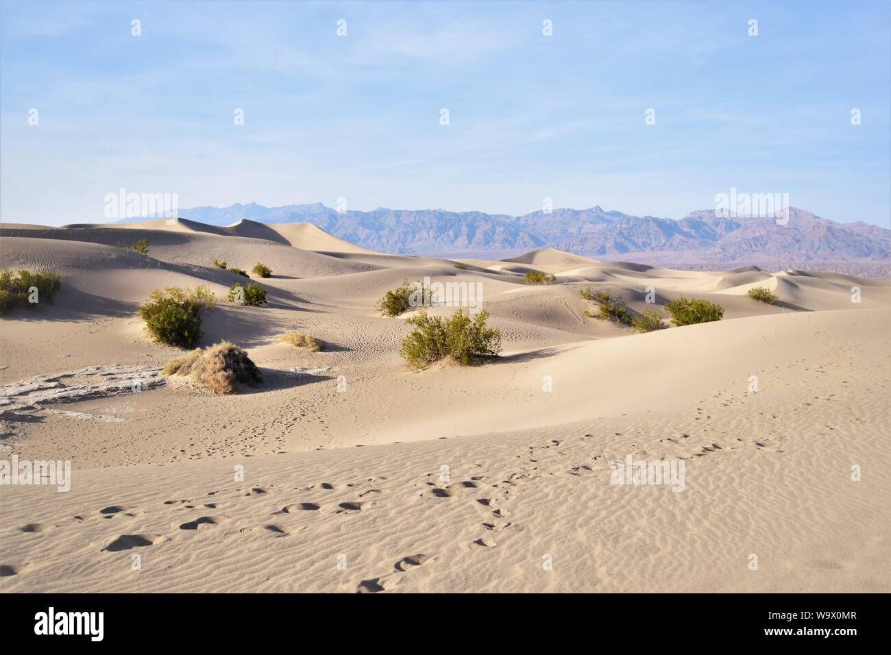 Huellas en la arena, el Parque Nacional Valle de la muerte Foto de stock