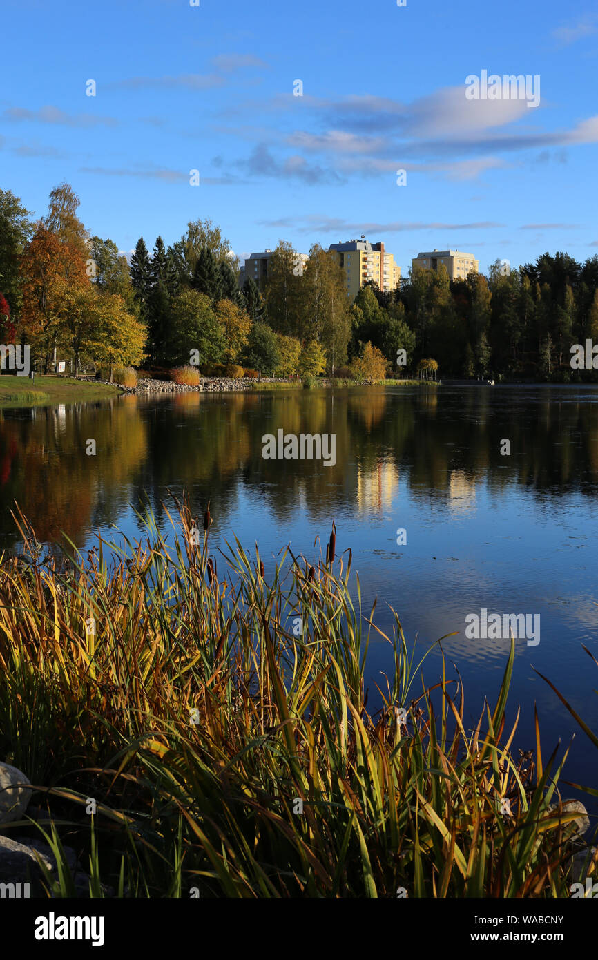 El paisaje del lago Valkeinen ubicado en Kuopio, Finlandia. Usted puede ver el amarillo y verde de los árboles durante otoño / otoño y pequeñas nubes. Foto de stock