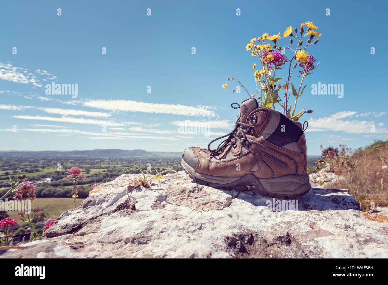 Botas de excursionista descansando con flores silvestres en un sendero de montaña con vistas distantes de campo en verano el sol Foto de stock