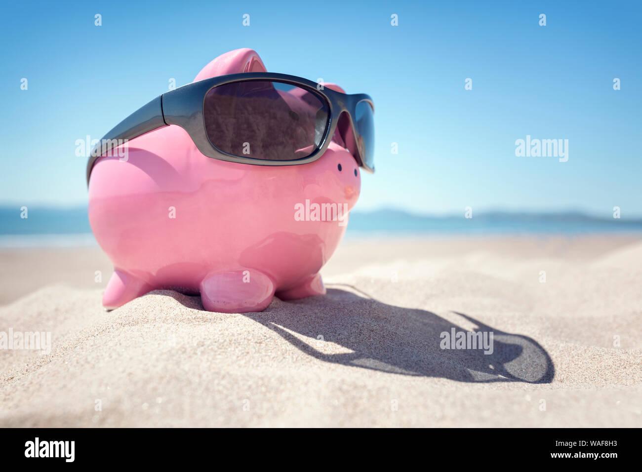 Hucha con gafas de sol en la playa junto al mar en verano Foto de stock
