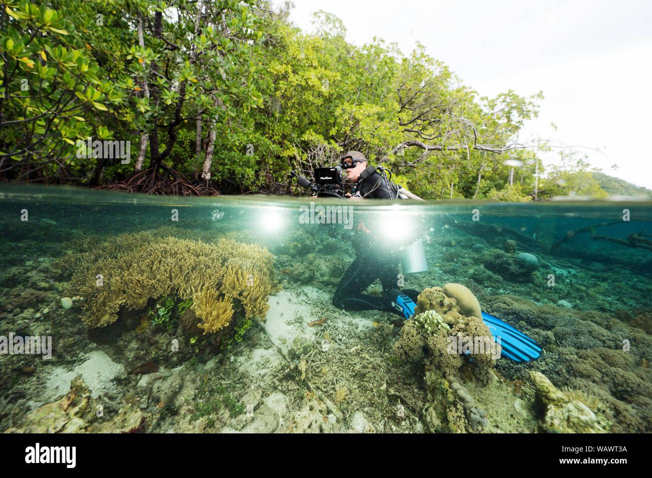Wildlife Photographer Tim Laman rodando por debajo de los manglares y los arrecifes de coral en Raja Ampat Indonesia. Foto de stock