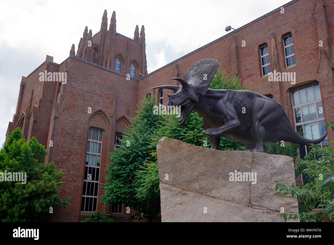 Yale Peabody Museum of Natural History, 170 Whitney Avenue, New Haven, CT Foto de stock