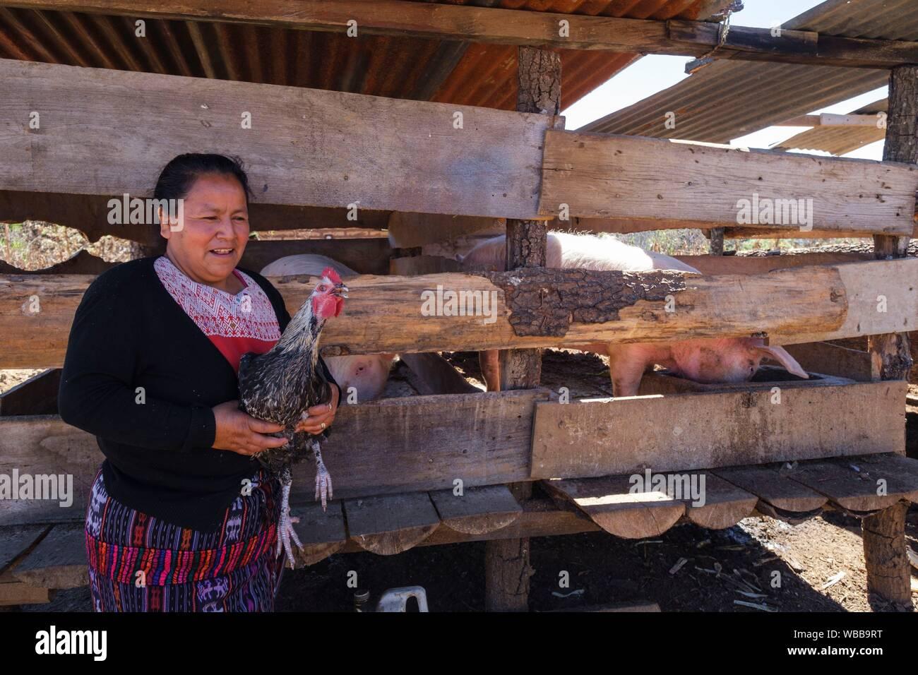 Beneficiaria de microcredito, Yacón, San Sebastián Lemoa, municipio de Chichicastenango, Quiché, Guatemala, América Central. Foto de stock