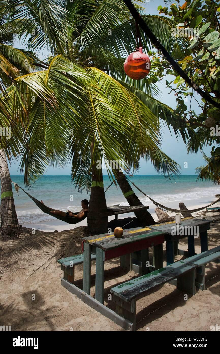 Colombia, la isla de Providencia, el hombre en una hamaca colgada entre dos palmeras de coco de Rolland's bar, situado en la playa de Manzanillo, bañada por las aguas color turquesa del Caribe Foto de stock