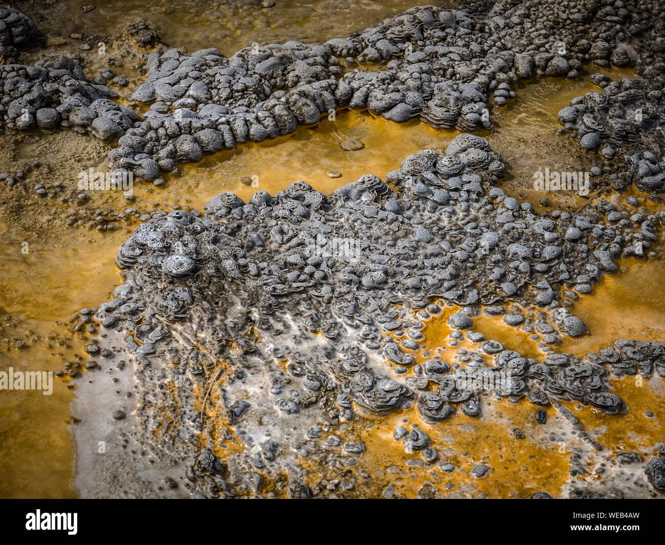 Un alto ángulo de visualización de Mat bacteriana en el Parque Nacional de Yellowstone Foto de stock