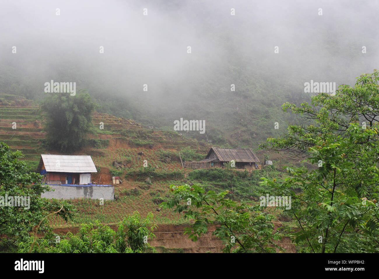 Vistas de Sapa paisaje con campos de arroz y casas. plantar plantas de arroz en terrazas de arroz de Vietnam. Agricultura y productos de arroz vietnamita Foto de stock