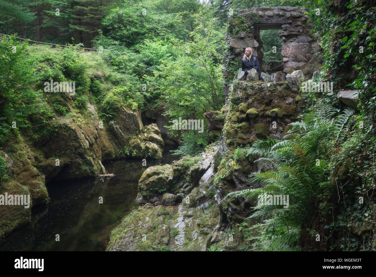 Mujer de pie sobre la vieja ruina por río en medio de árboles en el Parque Forestal de Tollymore Foto de stock
