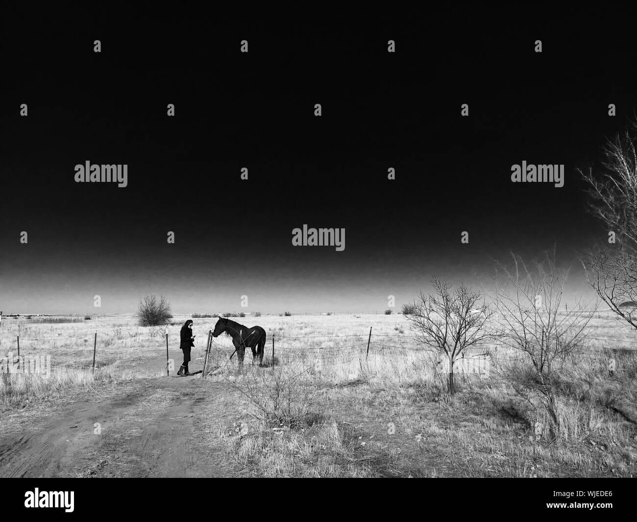 Vista lateral de la Mujer de pie a caballo en campo contra el cielo Foto de stock