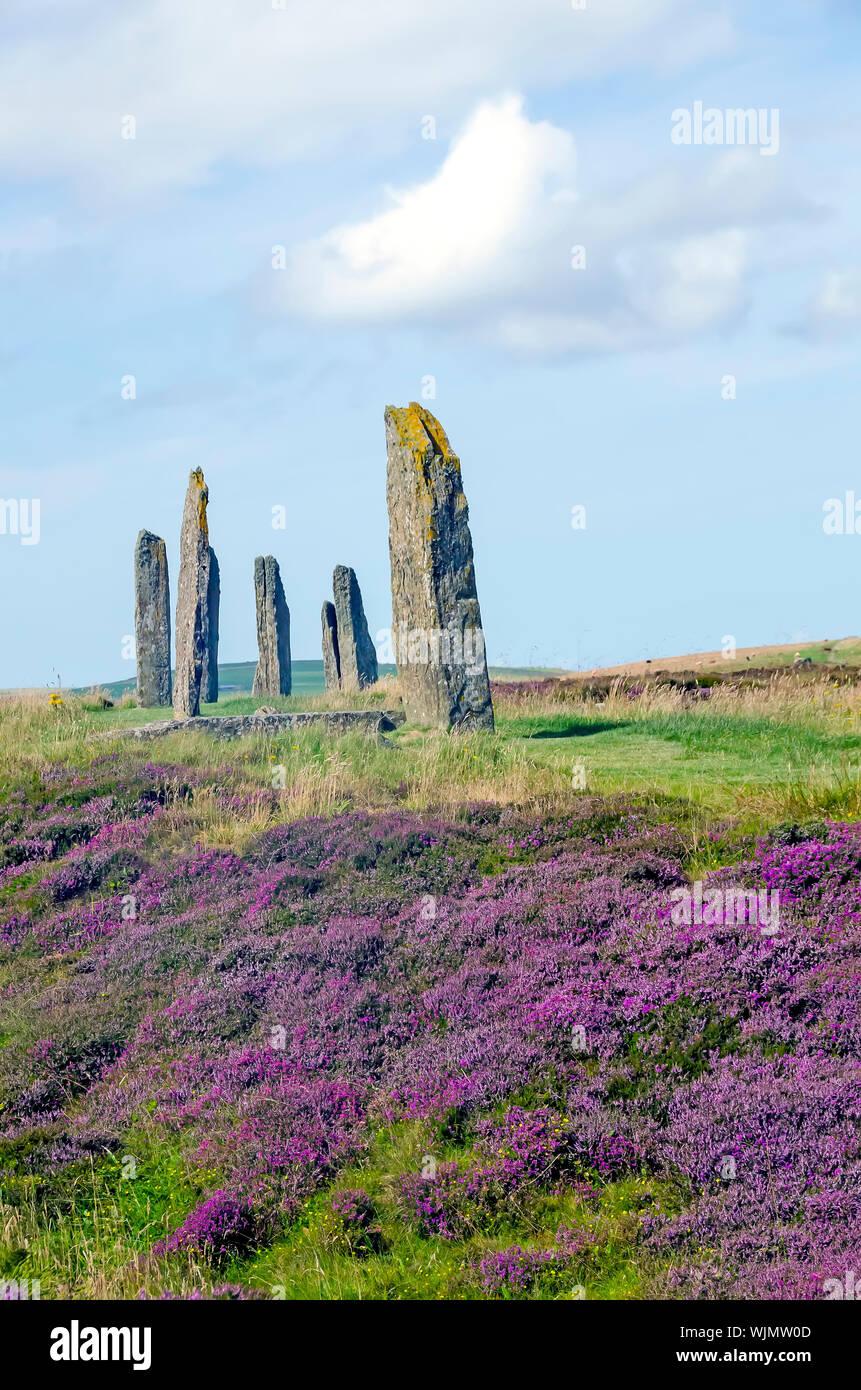 Anillo de Brodgar erigido 2500BC-2000Bc es el tercer círculo de piedra más grande de las Islas Británicas. Foto de stock