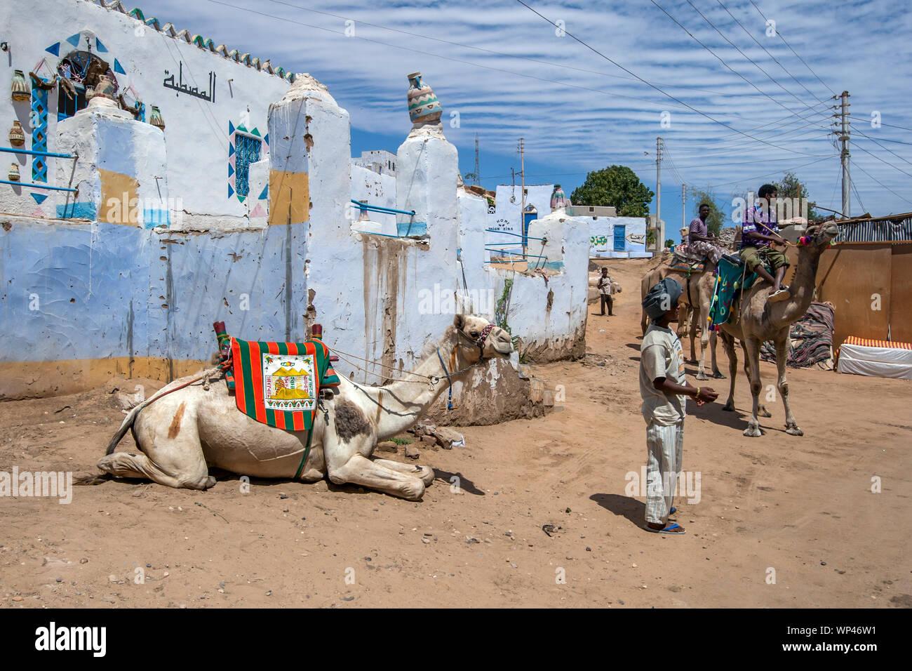 Un camello se relaja en la aldea de Nubia Garb-Sohel tras la realización de un turista a lo largo de la orilla oeste del río Nilo, en la región de Asuán en Egipto. Foto de stock