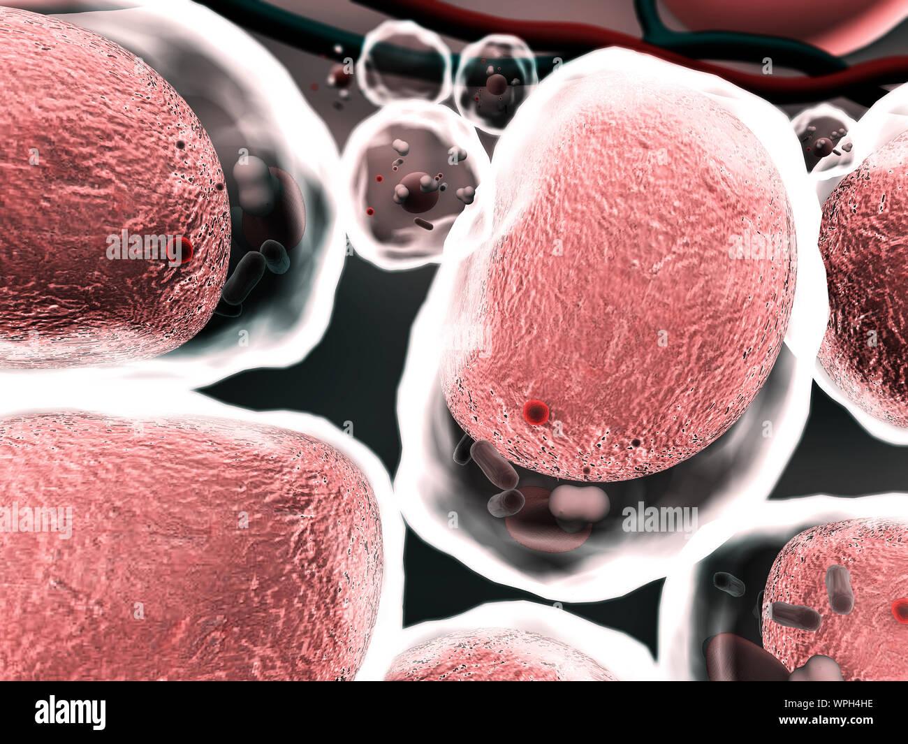 Grupo de células vivas en un microscopio de alta calidad 3D Render de celdas, campo de células, la estructura de la molécula, la estructura celular, la división de hu Foto de stock