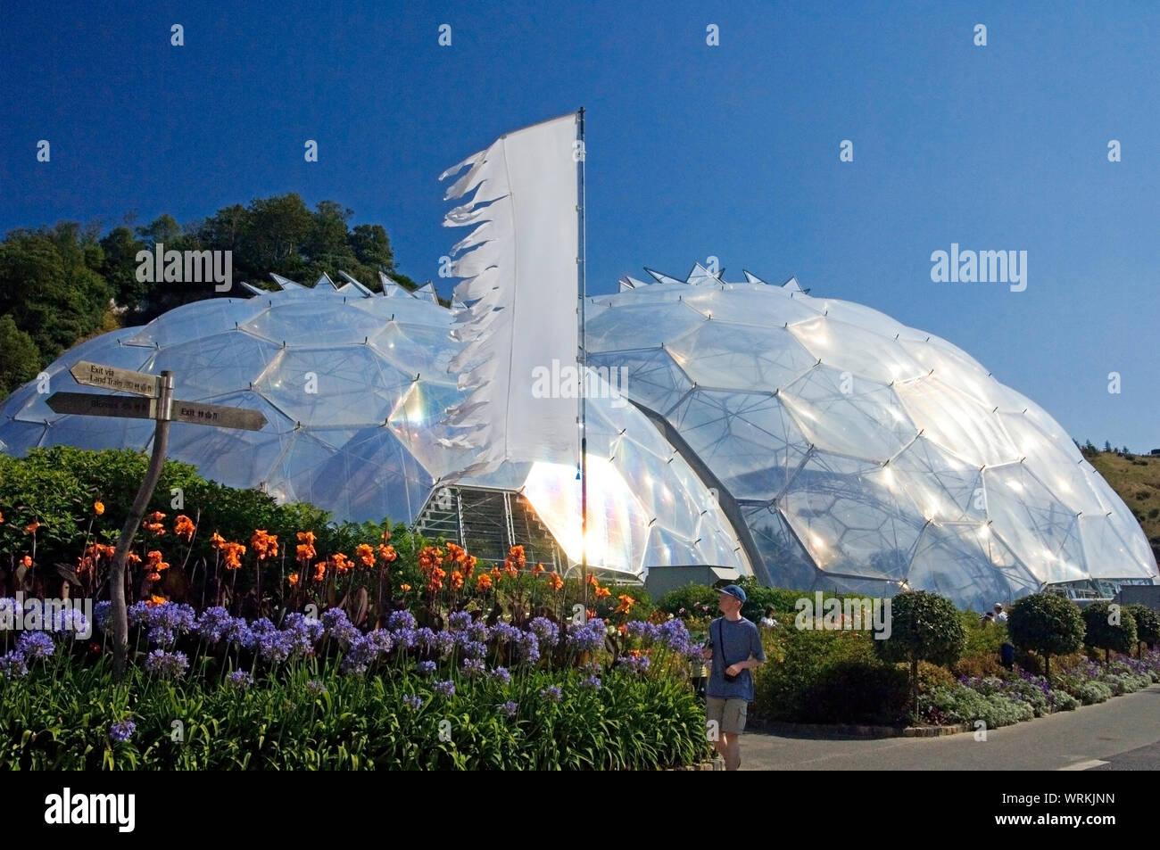 Las cúpulas geodésicas o biomas del Eden Project, Cornualles, en el REINO UNIDO Foto de stock