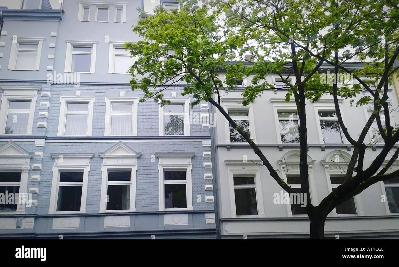 Edificio con árboles en segundo plano. Foto de stock