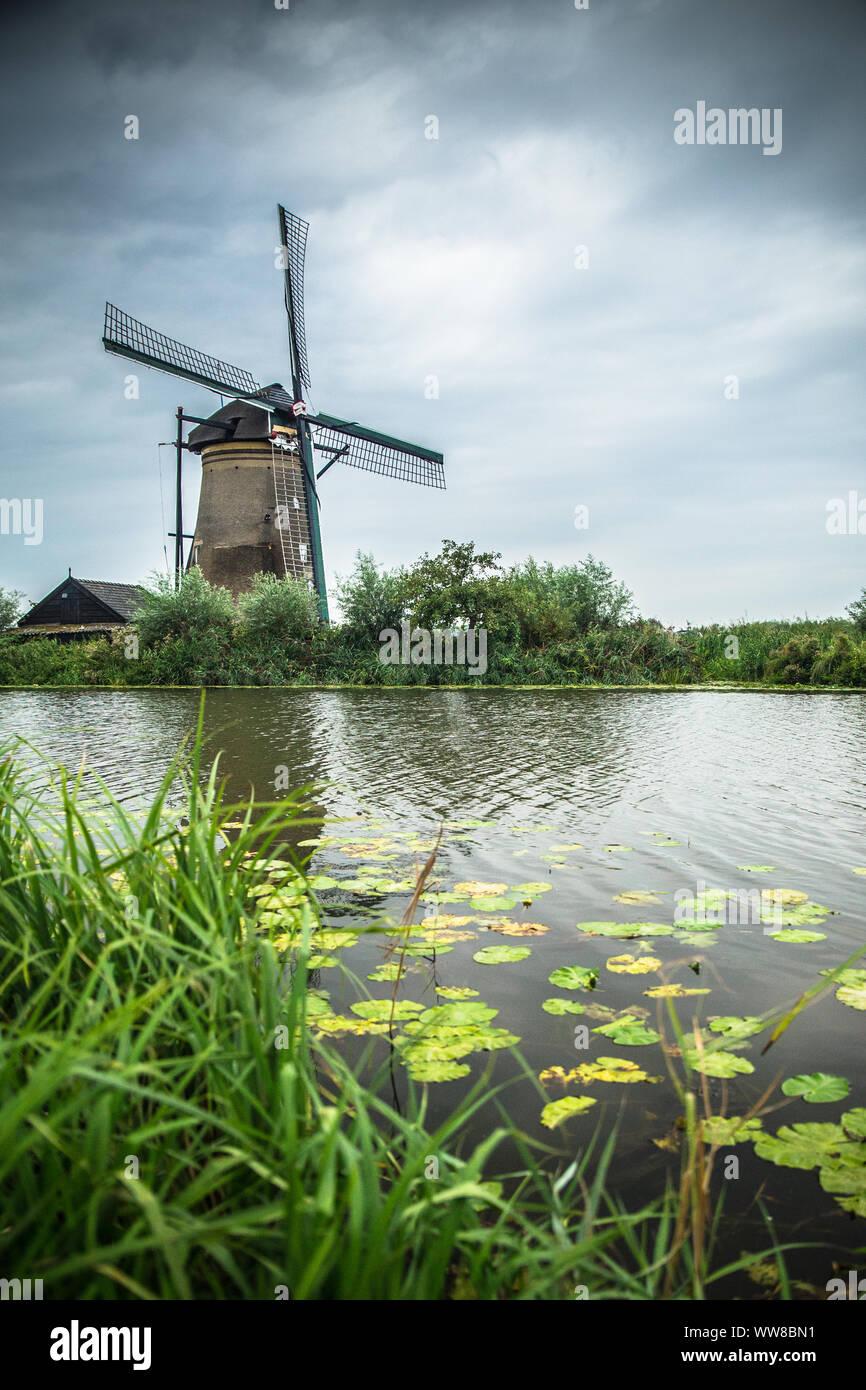 Vista del molino de viento holandés tradicional y paisaje visto desde Kinderdijk Holanda Foto de stock
