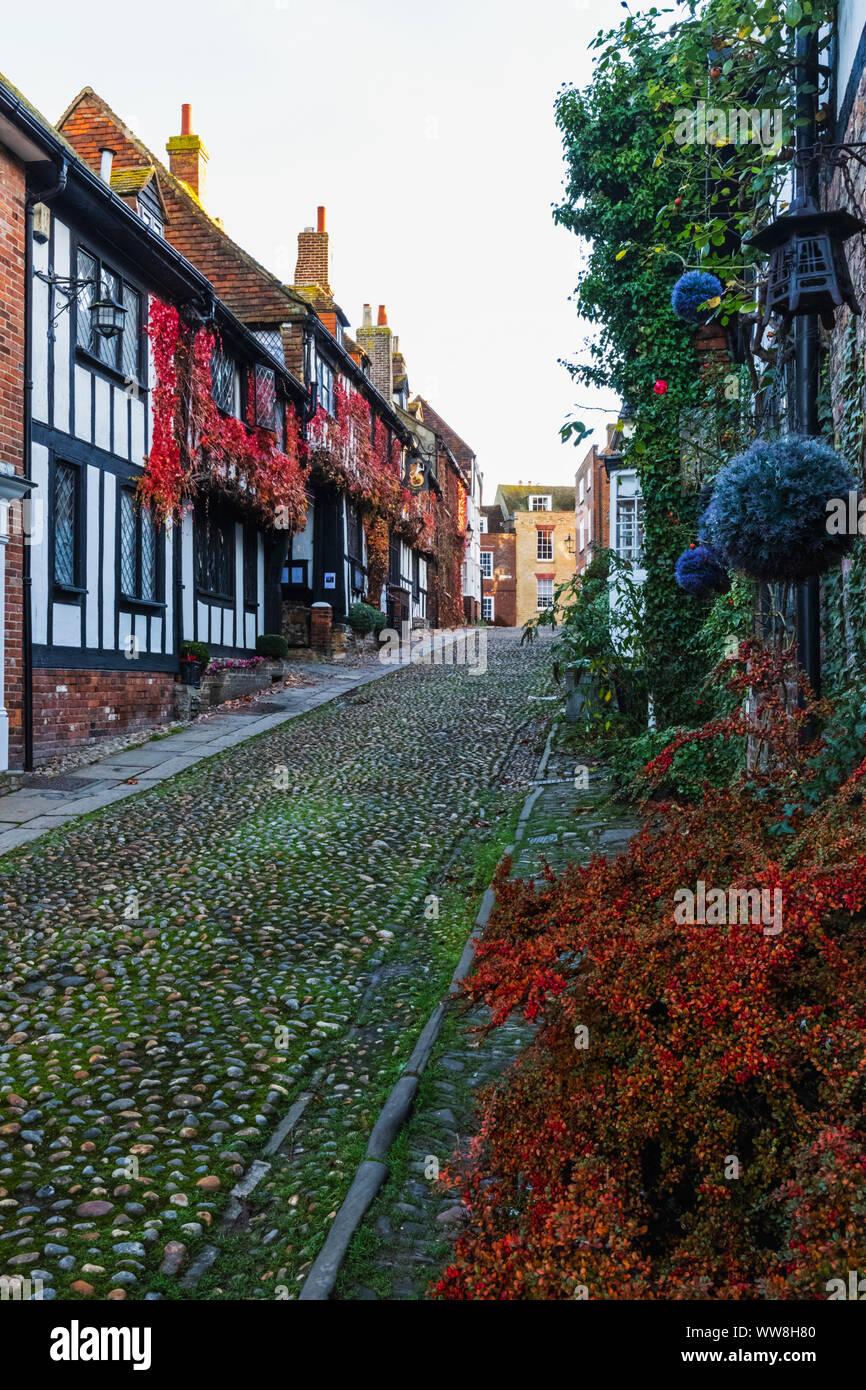 Inglaterra, East Sussex, el centeno, la sirena, la sirena de la calle Inn Hotel y Pub Foto de stock