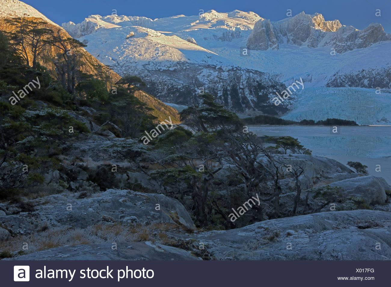 Invierno, Seno Pia, brazo oriental, Tierra del Fuego, Chile Imagen De Stock