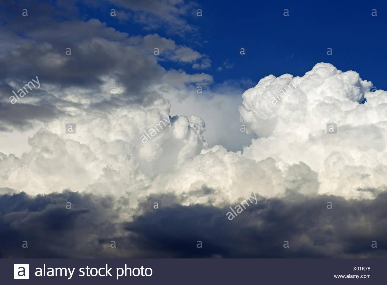 Las nubes cúmulos, Alemania Baden-Wurtemberg Foto de stock