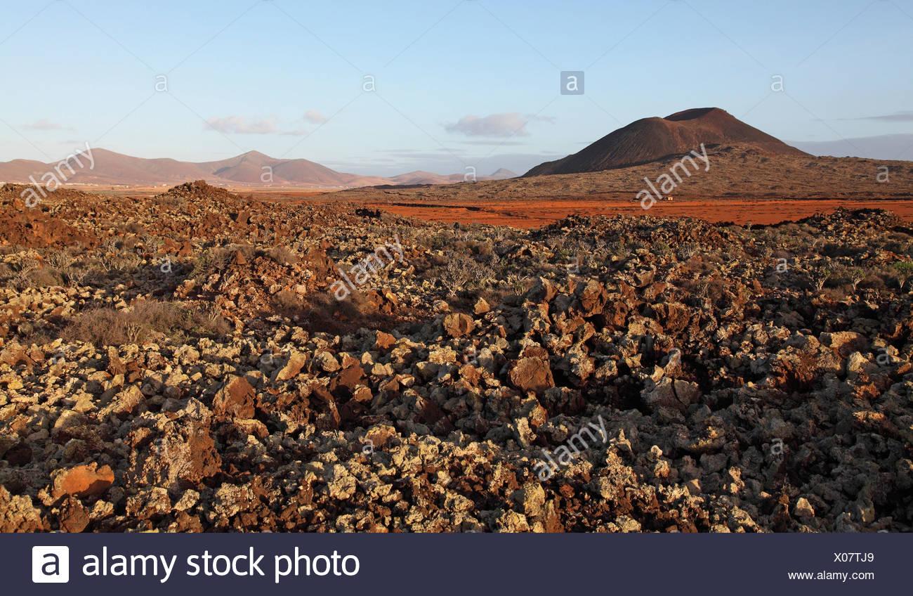 Un desierto rocoso con plantas suculentas, Islas Canarias, Fuerteventura, Tiscamanita Imagen De Stock