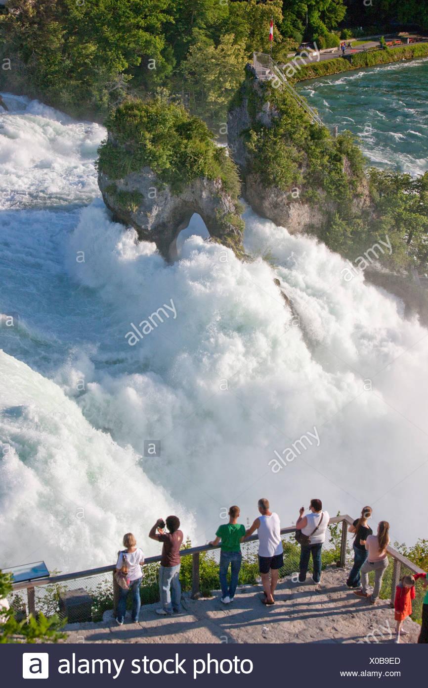 Rin cae, Schaffhausen, agua, cascada, cantón, SH, Schaffhausen, cantón, ZH, Zurich, Rin, Suiza, Europa, turismo Imagen De Stock