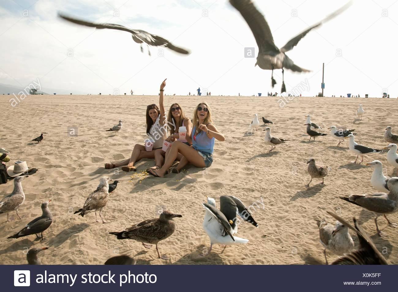 Tres jóvenes mujeres, sentado en la playa, rodeado de gaviotas Imagen De Stock